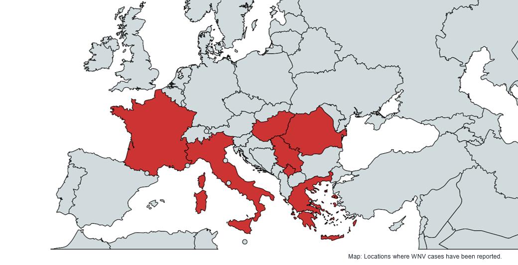 West Nile Virus Outbreak in Europe