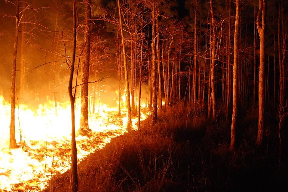 Wildfires trigger evacuations near Lisbon